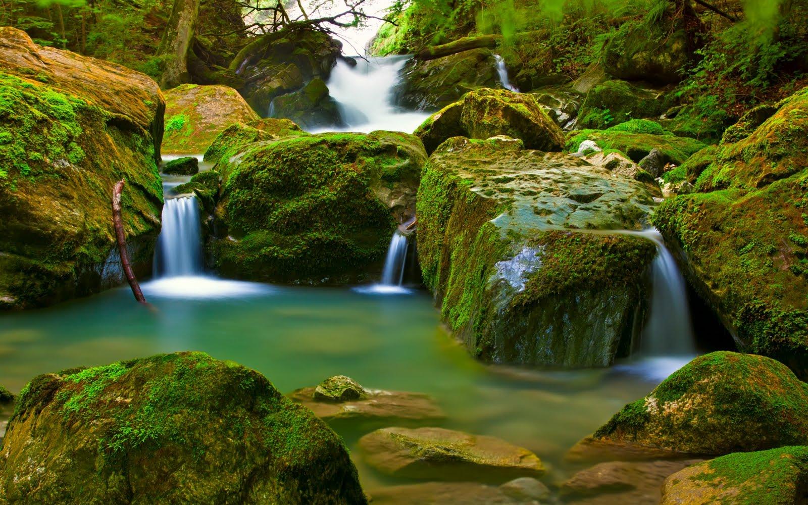 Las mejores imágenes y fotografías de paisajes naturales the best