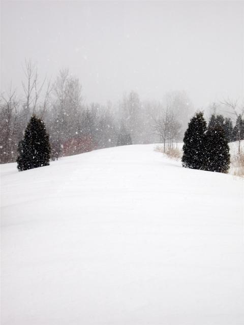 [snowy_trail]