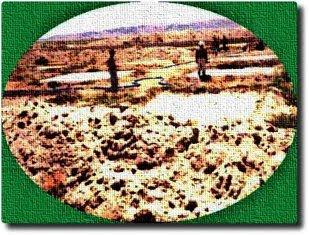 Tarımsal Alt Yapı Çalışmaları