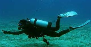 about scuba diving