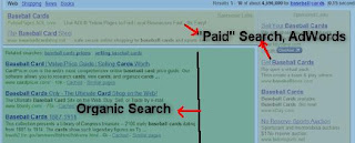 SEO Basics-Organic and paid Search Result