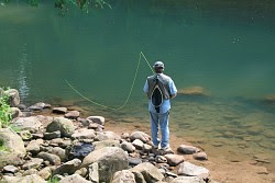 The flyfishmagazine blog january 2008 for Elk river wv trout fishing