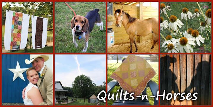 Quilts - n' - Horses