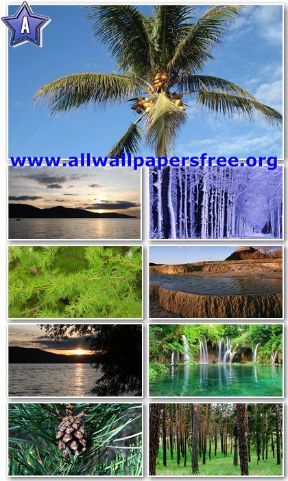 1080p hd wallpaper. Nature Full HD Wallpapers