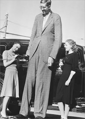 Alton Giant Robert Pershing Wadlow Tallest Man