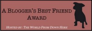 Blogger's Best Friend Award