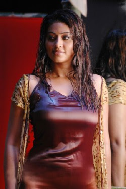 Sneha Ullal is the new babe's of tollywood