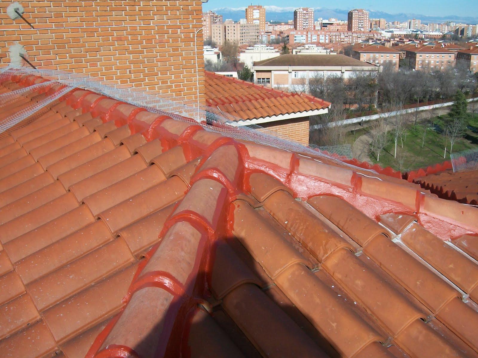 Pintar con clorocaucho los tejados impermeabilizar con for Tejados prefabricados