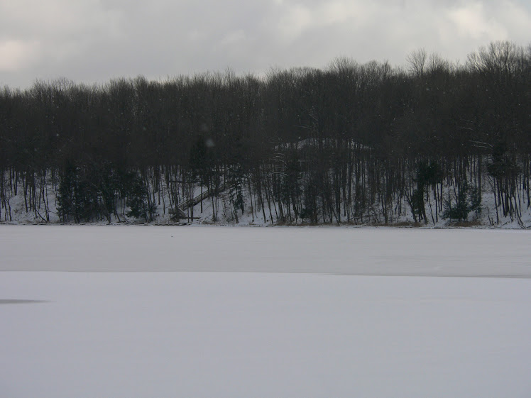 Dec 4 - Our house from across the lake