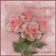 Una rosa per te...
