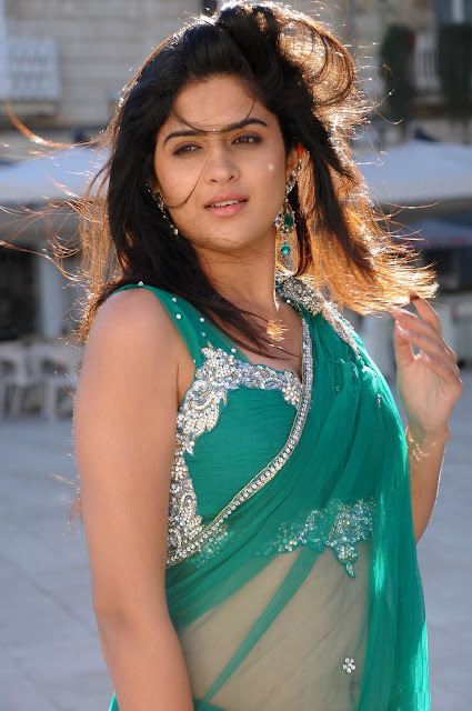 deeksha+seth ALLHOTACTRESSIN.BLOGSPOT.COM+%25285%2529 Actress Deeksha Seth in Hot Spicy Green Saree Wallpapers