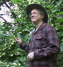The Author, Tobias D. Robison