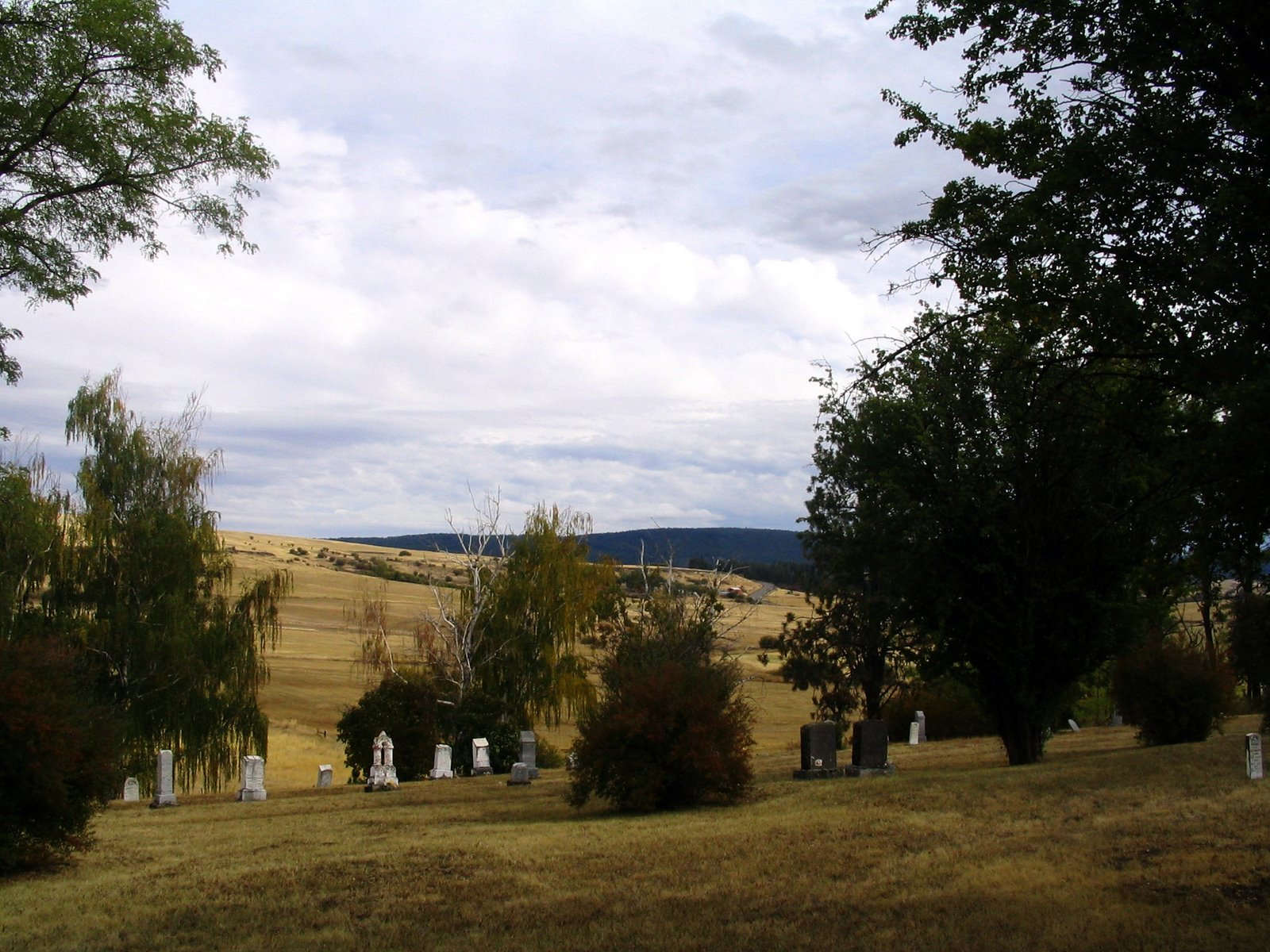[pastoral+(highland,+elgin)]