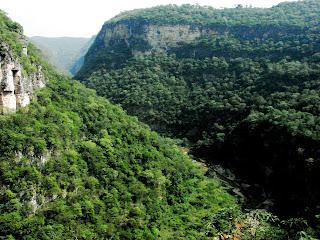 reserva natural biosfera, selva el ocote, chiapas, méxico, ANP