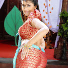 Item Girl Kausha Spicy Photo Gallery