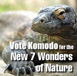 vote for komodo