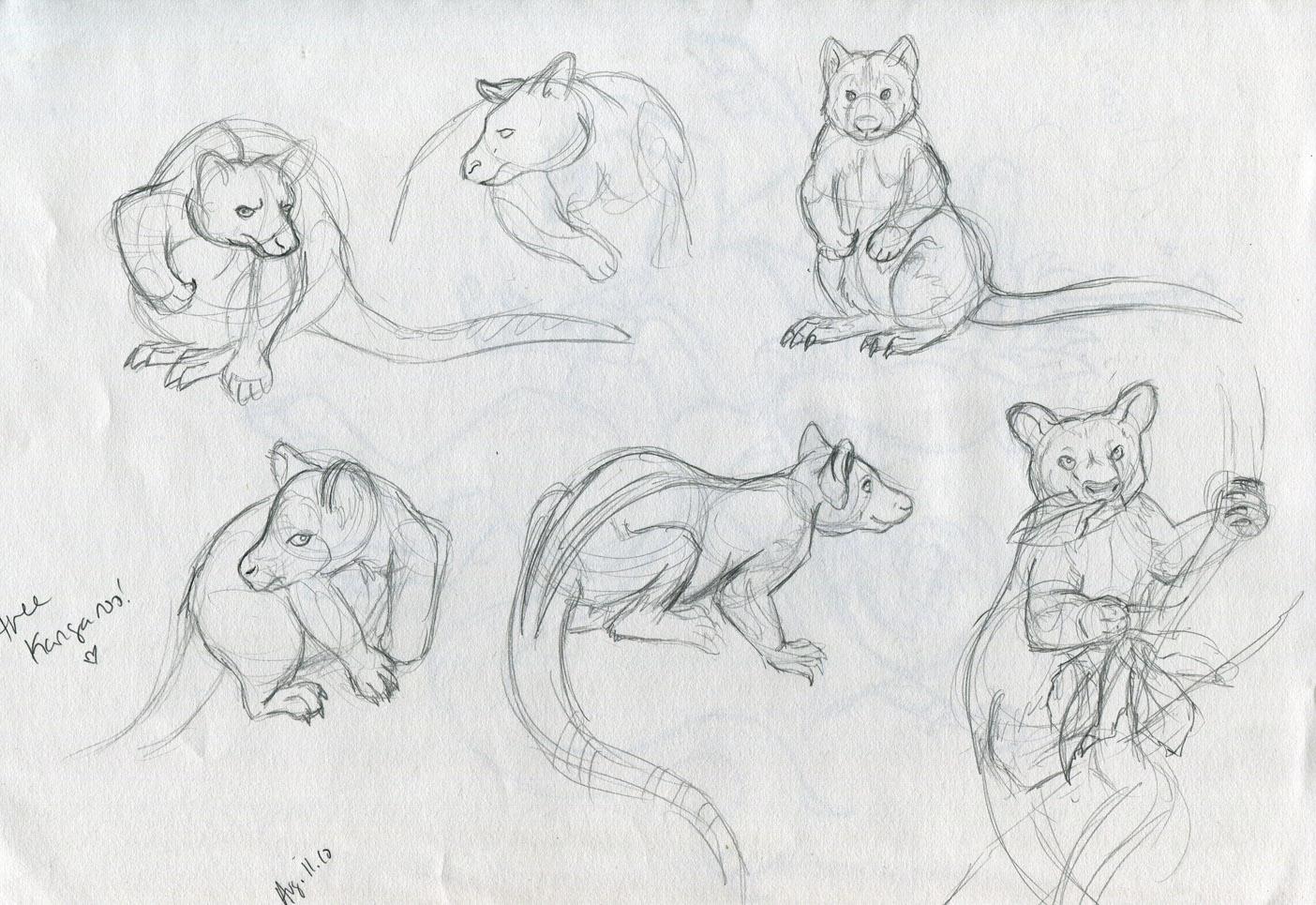 Tree kangaroo drawing for Cute tree drawing