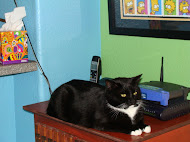 Salem,  b'day 1/14/2009