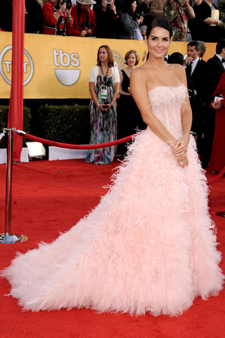 Angie Harmon looked like a pretty pretty princess in her Monique Lhuillier