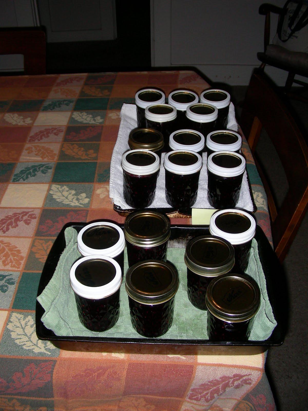 how to make blackberry freezer jam without pectin