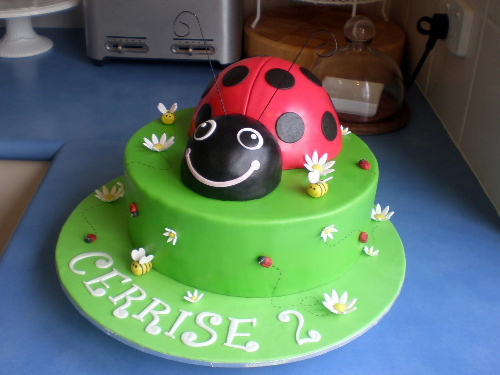 Sugar Siren Cakes Mackay Ladybug Birthday Cake