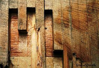 Wooden Arhitecture