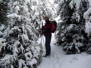 ... y más bosque