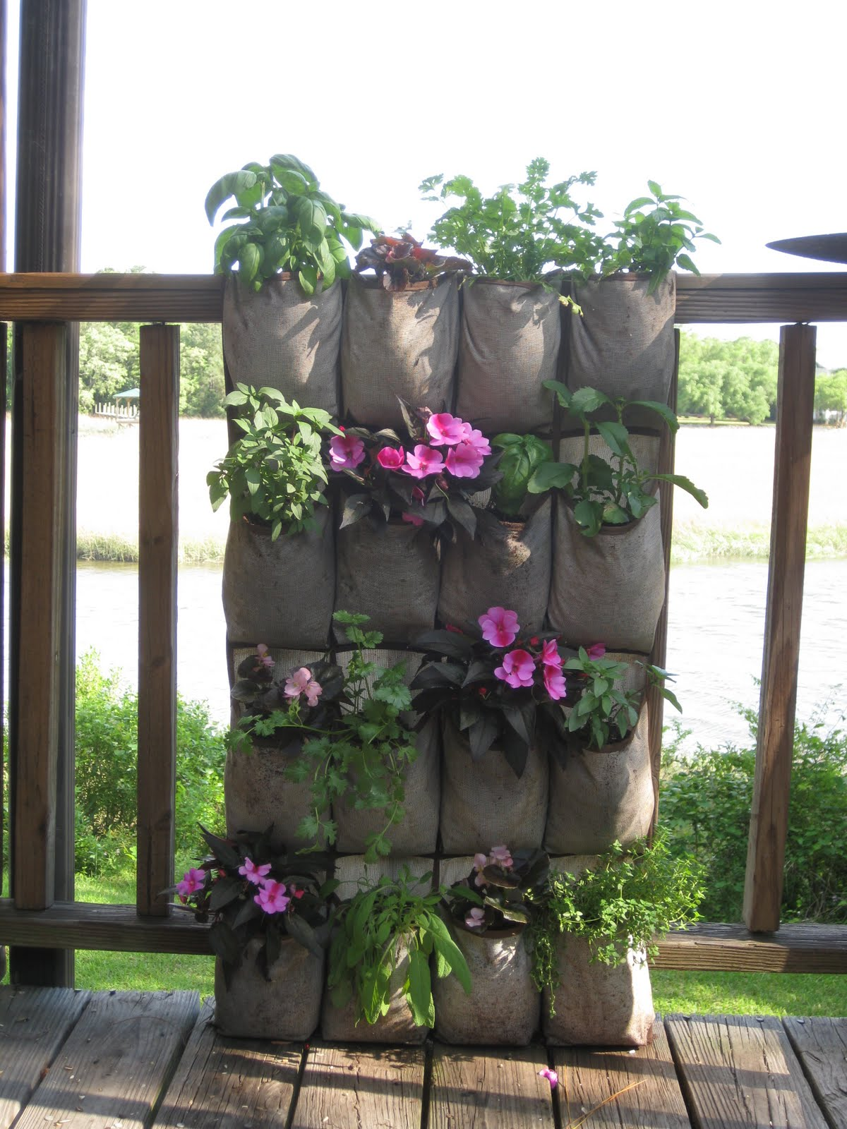 Offshoots vertical gardening on the cheap for Cheap vertical garden