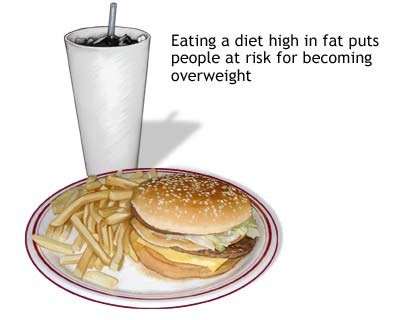 fast food and the dangers of it in america For better or worse, fast food is a part of most north american diets — a quick, easy and inexpensive meal solution that fits those hectic lifestyles but do we actually know anything about all those scary-sounding ingredients contained in the foods we're eating.