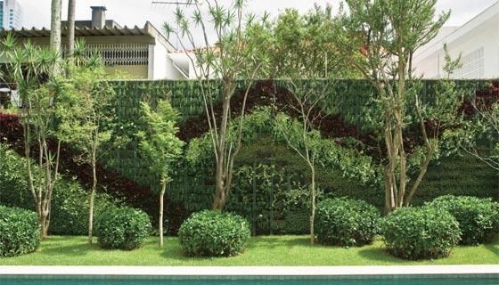 jardim vertical no muro : jardim vertical no muro:Verde Jardim: Construindo um muro verde