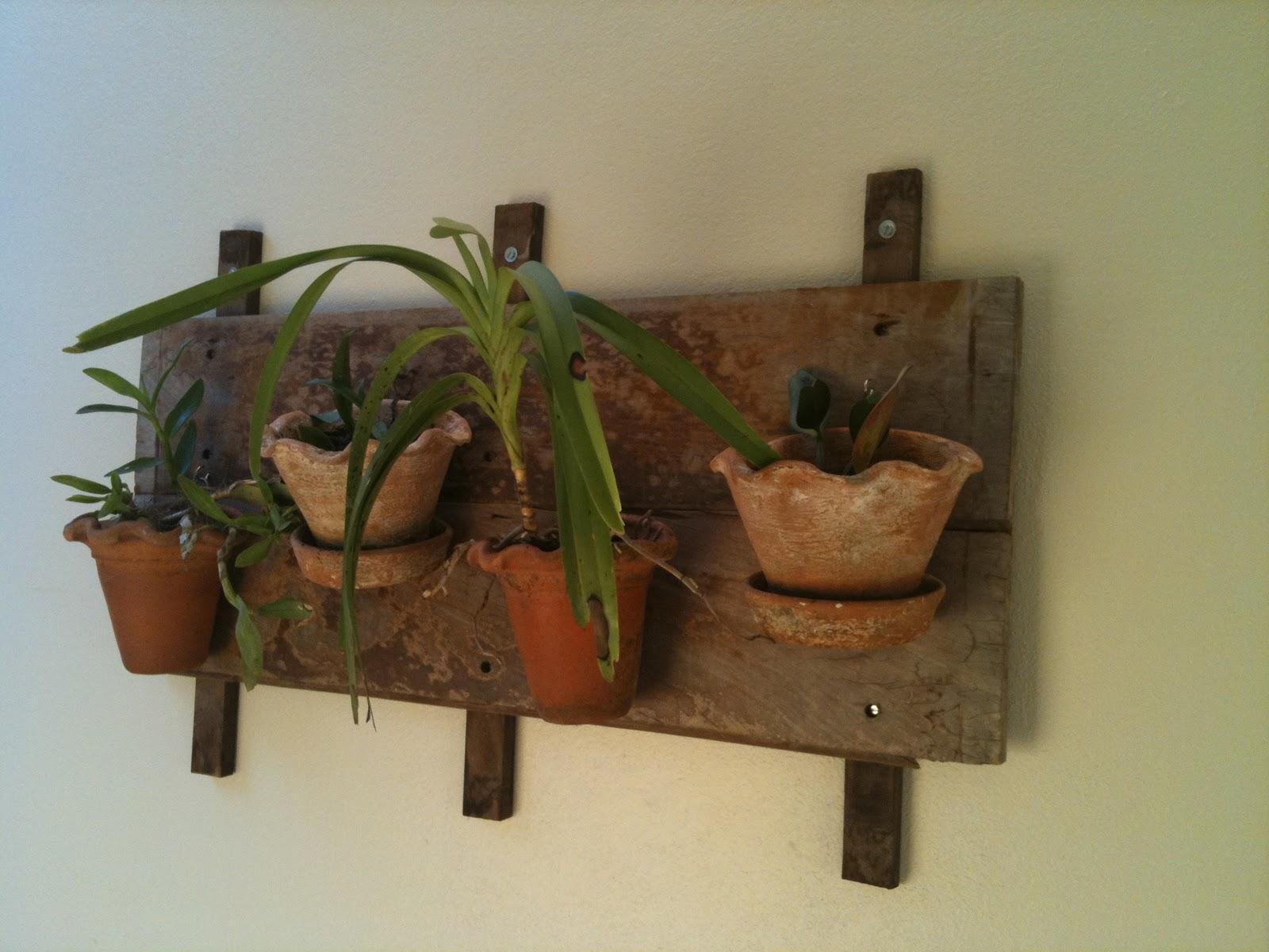 #654327 terça feira 14 de setembro de 2010 1600x1200 px caixas de madeira para orquideas @ bernauer.info Móveis Antigos Novos E Usados Online