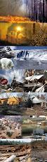 As causas do aquecimento global
