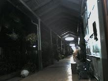 pasillo del HNR