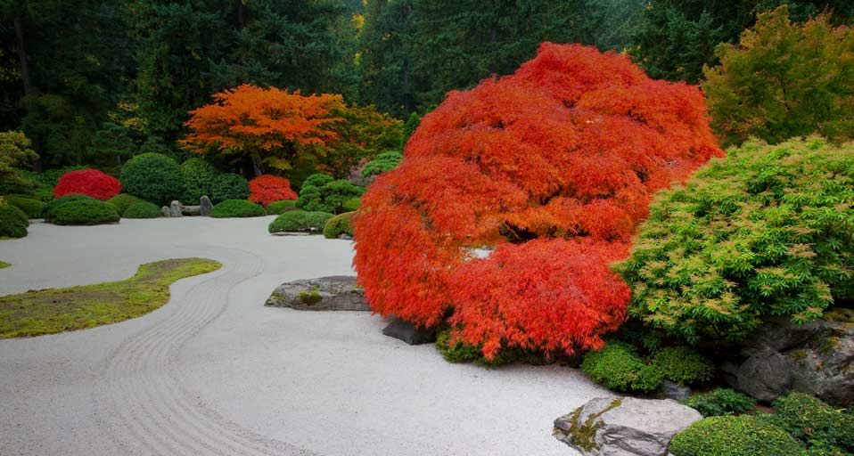 Fall or Autumn if you prefer on Pinterest Japanese