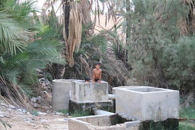 Juegos en el palmeral de Nefta