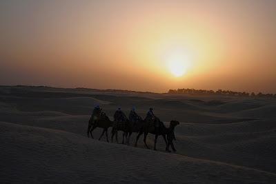 Desierto Sahariano