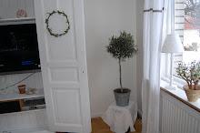 Mitt olivträd i vardagsrummet
