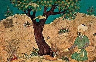 cuento sufí