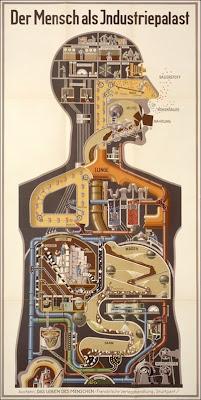 El ser humano - La máquina de ingeniería más compleja