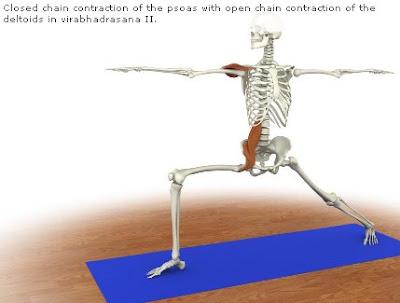 Hatha Yoga en imágenes
