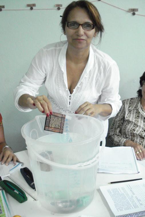 Pesquisas e experiências....Mão na Massa, UFV  Viçosa, Novembro  2008