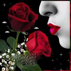 Ofereço Uma Rosa!!!