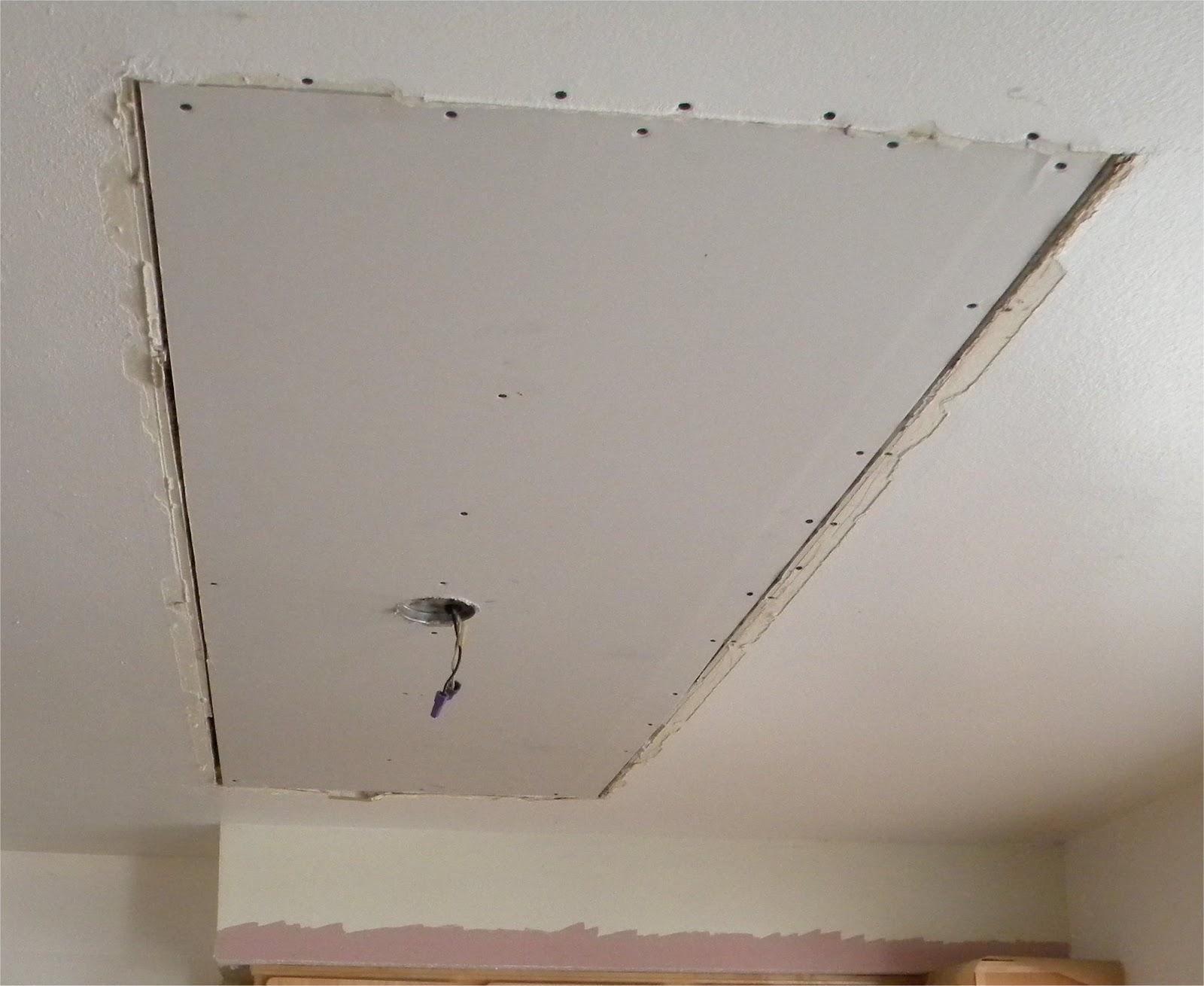 http://3.bp.blogspot.com/_Extaj5Mzpaw/TPSD6QRbVrI/AAAAAAAACVs/T1sp0I90b_Q/s1600/new_ceiling_board.jpg