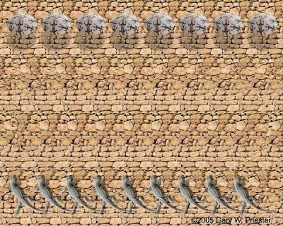 Acoma Seed Pot Illusion
