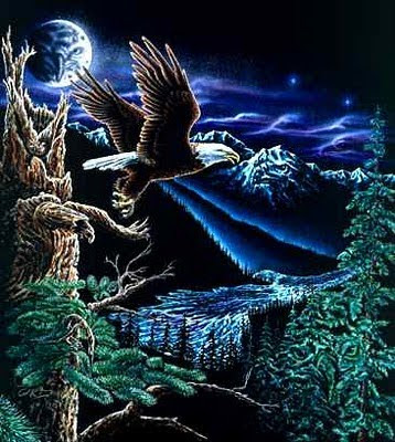 Find the Hidden Eagle Illusion