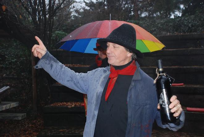 2009-12-30 Gérard LENORMAN sur la vigne de Farinet - Journée arrosée et humide
