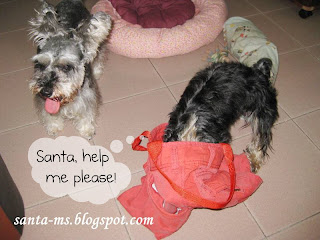 TOTE-BAG MINIATURE-SCHNAUZER SILKY-TERRIER