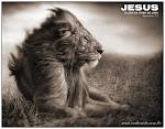 Jesus, Leão da Tribo de Judá