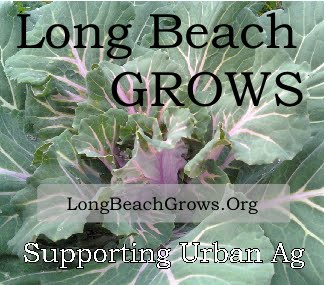 Long Beach Grows