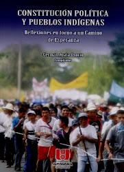 CONSTITUCIÓN POLÍTICA Y PUEBLOS INDÍGENAS